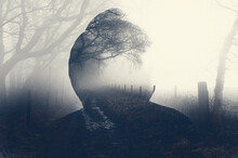 A Double Exposure Of A Spooky Half Transparent Hooded Figure. Over Layered Over A Foggy Path In The Countryside. On A Moody Foggy Winters Day.