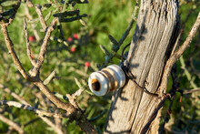 Old Wooden Fence With Antique Glass Electric Fence Insulators