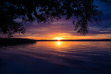 A Beautiful Sunset Scenery At The Lake With Tree Branch Sihouette. Lakeside Evening Landscape In Northern Europe.