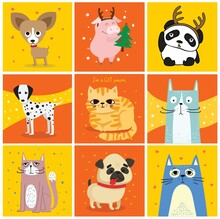 Cool Cats And Dogs. Vector Trendy Hipster Style Greeting Cards Design, T-shirt Print, Inspiration Poster.