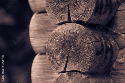 Fotografie, Obraz The wall of a wooden log house made of dry wooden round logs