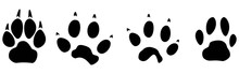 Cat And Dog Paw Prints