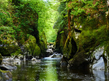 Stunning Beauty Spot Fairy Glen In Snowdonia National Park, Wales. River Conwy Cascading In Narrow Gorge Full Of Green Moss Covered Boulders  And Pink Flowers Above Waterfall On Right Side Cliff.