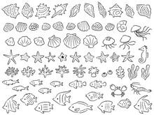 色々な海の生き物の手描き風の線画イラストセット