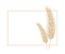 Pampas Dry Grass Frame. Branch Of Pampas Grass. Panicle, Feather Flower Head. Vector