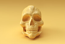 Human Skull On Rich Yellow Background. The Concept Of Death  3d Render Illustration.