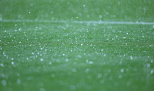 Details Of Green Grass Of Football Pitch Seen During The Rain Showers