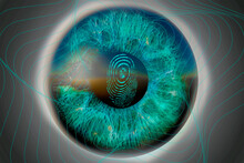 Human Eye With Fingerprint Outlines. Digital Security And Data Protection Concept Using Iris Scan. 3d Rendering