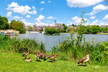 Böblingen, Germany, Lower Lake With Ducks And Old Town