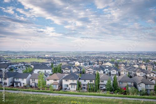 Fototapeta Suburbs of Calgary