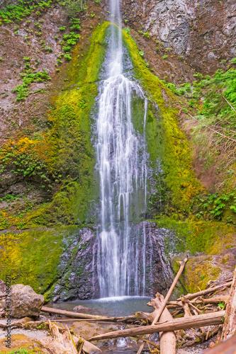 Hidden Waterfall in a Temperate Rainforest #437464291