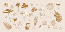 Vector Set Of Tropical Summer Hand Drawn Elements For Social Media And Web Design Vector Set Of Tropical  Summer Hand Drawn Elements For Social Media And Web Design