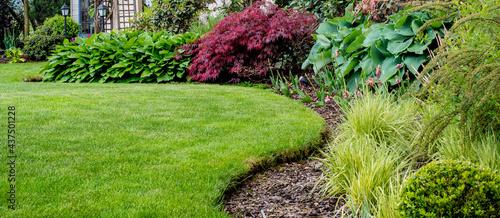 Piękny zadbany trawnik w ogrodzie