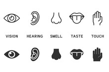 Vector Set Of Five Human Senses Icons. Contains Icons Vision, Hearing, Smell, Taste, Touch.
