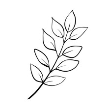 Simple Doodle Sketch Of Floral Twig With Leaves