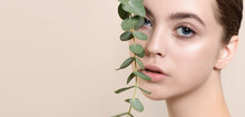 Portrait Of Beauty Model With Natural Nude Makeup With Eucalyptu