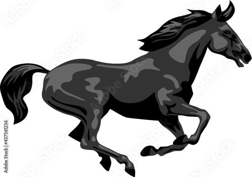 Obraz na płótnie Black horse galloping - vector illustration