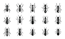 Cute Ant Icons Set, Simple Style