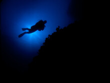 Silhouette Of A Diver Backlit Against The Sun.
