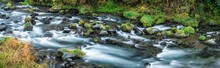 Forest Stream Panorama With Rocks