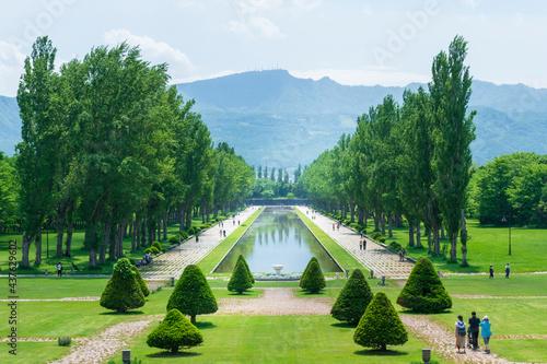 Fotografering 新緑のポプラ並木とサンクガーデンの風景(札幌市前田森林公園)