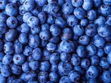 Ripe Blueberries Close-up, Top View - Berry Blue Background, Pattern