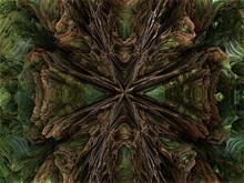Fractal Woods