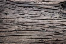 Bark Pattern Is Seamless Texture Of Tree For Texture And Background. Old Wood Tree Background.