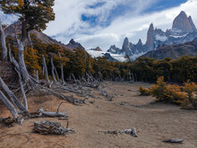 Mountain Landscape With Dead Forest. Mountain Scenery With Fiz Roy, Andes, Argentina. Sunny Mountains On A Blue Sky Background. Snow Lying On The Mountain Slope. Dry Trees On A Brown Sand.