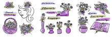 Multi Color Set Of Floral Elements In The Style Of Line Art Wedding Theme On A White Background. Doodle And Scribble. Basket And Vase With Flowers, Girl Face, Bouquet Of Blossom Roses, Leaf Boot And
