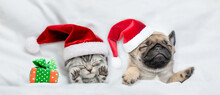 Kitten And Pug Puppy Wearing Santa Hats Sleep Together With Gift Box Under A White Blanket On A Bed At Home. Top Down View