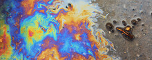 Puddle Gasoline Background, Wet Oil Multicolored Rainbow Pollution Spill