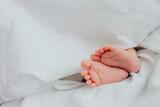 Baby's feet under a white blanket