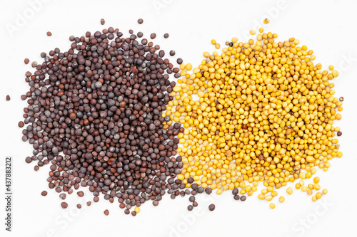 piles of yellow and brown mustard seeds on gray