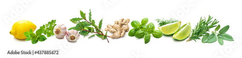 Fotografia Panoramic background with bunches of fresh garden herbs and spices