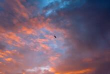 태풍전야의 하늘과 구름 그리고 석양