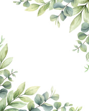 Watercolor Vector Card Of Green Branches And Leaves.