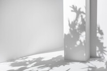 White Table And Abstract Geometric Wall Background With Flowers And Palm Leaves Shadows Overlay. Abstract Gray Studio Background For Product Presentation. 3d Room With Copy Space. Summer Concept.
