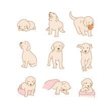 Cute Golden Retriever Puppy Characters Collection. Hand Drawn Style Vector Design Illustrations.