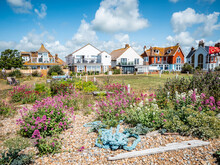 Beach Houses, Pevensey Bay, England. Beachfront Homes On The Pebble Beach Of The South Coast Of England On A Bright Sunny Summers Day.