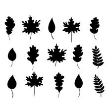 The Silhouette Of Black Fallen Leaves . Autumn Fallen Leaves. Elements Of Autumn Design. Vector Illustration