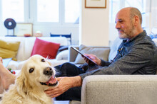 Man With Tablet Caressing Schnauzer On Sofa