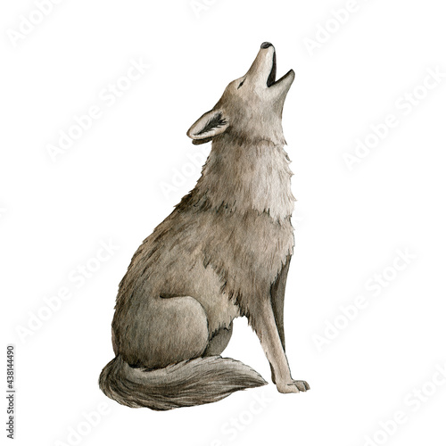 Canvas Howling wolf watercolor illustration