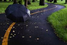 Umbrella On Asphalt Path Of City Park In Rainy Day. Concept Bad Weather