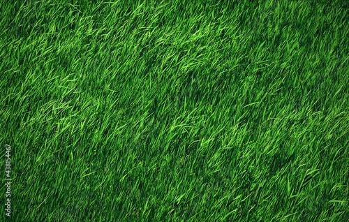 Fotografia green grass field close up