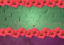 Funny Grunge Background With Texture Of Green And Purple Old Brick Wall And Pink Zinnia Flowers Frame