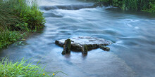 The River Avon At Daniels Well, Malmesbury, Wiltshire
