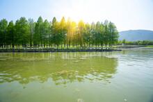 Dongqian Lake Wetland Park, Ningbo, China