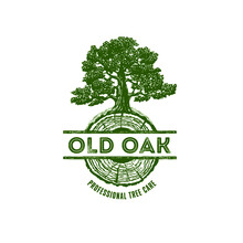 Old Oak Professional Arborist Tree Care Service Organic Eco Sign Concept. Landscaping Design Craft Raw Logo. Rustic Vector Banner Illustration