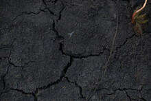 The Texture Of Cracked Black Soil. Close-up Soil.
